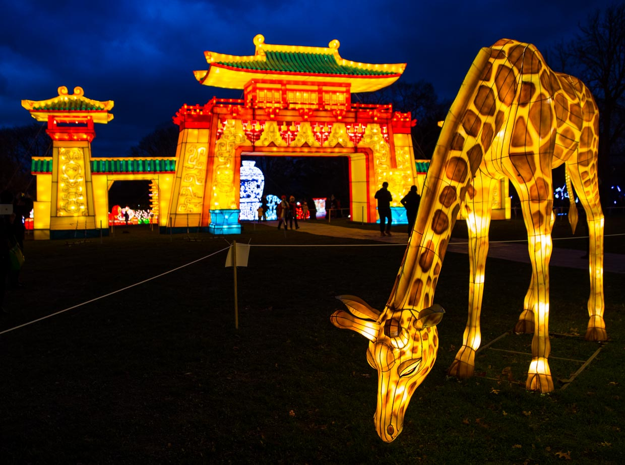 Lighted giraffe and temple on the grounds of Snug Harbor