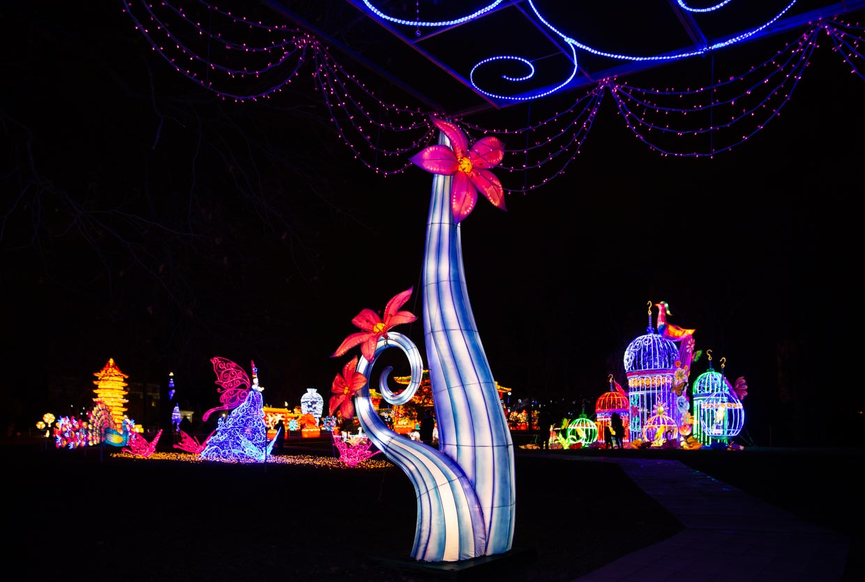 Magical forms at the NYC Winter Lantern Festival at Snug Harbor
